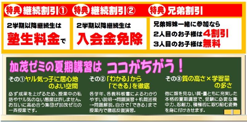 加茂ゼミの夏期講習はココがちがう!